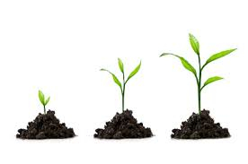 Grow as a Leader